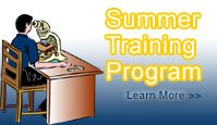 Summer Training Program in Chennai